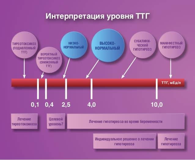 Ттг при беременности норма 2 триместр таблица