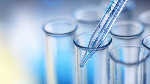Цена на проведение анализа крови на свободный Т4 в частных лабораториях колеблется в пределах 450-700 р.
