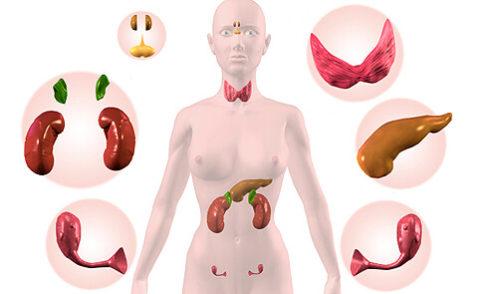 Органы, которые поражаются при гиперпаратиреозе