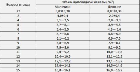 Показатели нормальных размеров щитовидной железы в детском возрасте