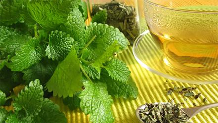 Как лечить гипотиреоз: диета и травы.