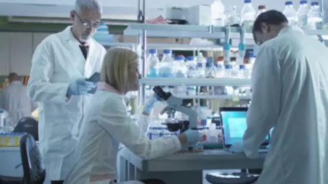 Лаборатория для проведения гормональных исследований