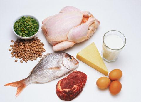 На фото – основные источники белка в продуктах