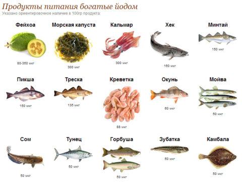На фото – главные пищевые источники йода