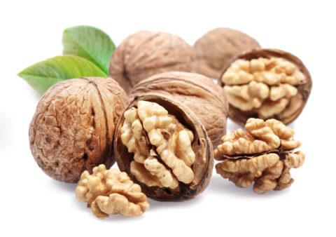 Грецкие орехи довольно часто используются в фитотерапии патологий щитовидной железы