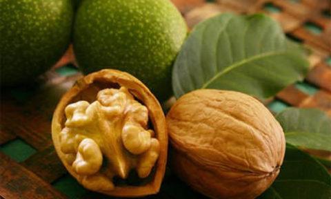 Народная медицина при зобе успешно использует плоды грецкого ореха