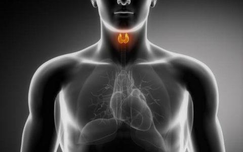 Фолликулярная аденома щитовидной железы – не время для паники