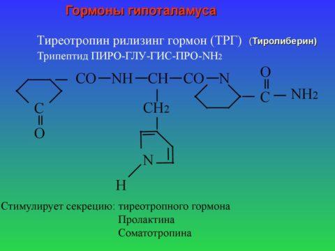 Тиреотропин-рилизинг-гормон, регулирующий продукцию тиреотропного гормона