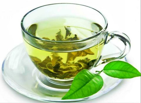Зеленый чай поможет справиться с болезнями щитовидки
