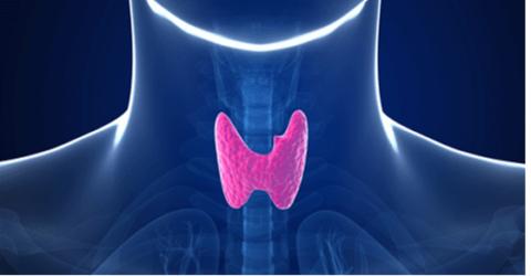 Гипотиреоз щитовидной железы – в чем опасность?