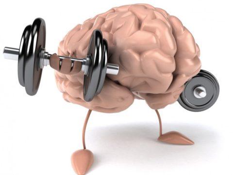 Тироксин дает энергию для работы и учебы и просто для мыслительной и физической деятельности
