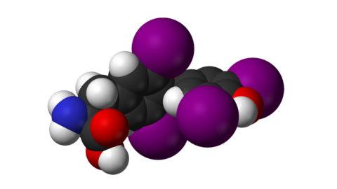 Гормон Т4 в своей основе содержит 4 атома йода