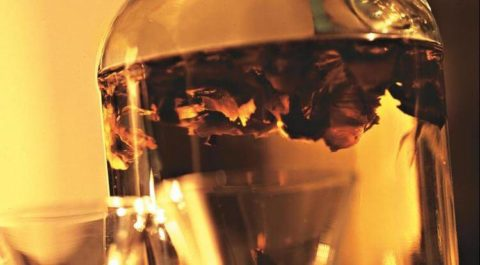 Водочная настойка перегородок плодов грецкого ореха
