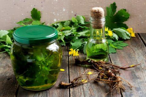 Настойка чистотела — признанное официальной медицинской наукой народное лекарственное средство