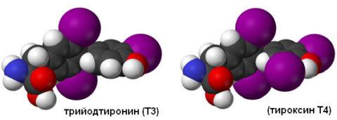 Название тиреоидных гормонов отражает количество молекул йода в их составе