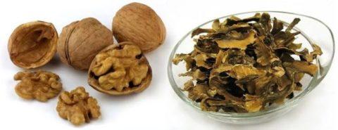 Состав перегородок грецкого ореха обогащен огромным количеством йода.