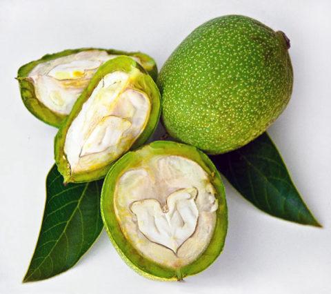 Зеленоватые орехи содержат большое количество йода и питательных элементов. Количество минералов снижается в процессе их высушивания.