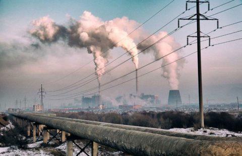 Чем хуже экология, тем больше регистрируется заболеваний щитовидки