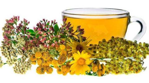 Фитотерапия – наиболее популярный способ лечения щитовидки в домашних условиях.