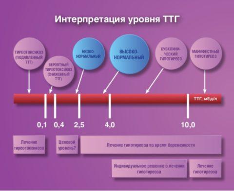 Интерпретация уровня тиреотропина