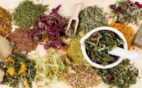 Лечебные травы при гипертиреозе