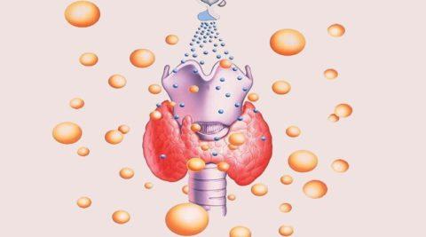 Наличие антител к структурам ЩЖ может свидетельствовать о развитии аутоиммунного заболевания