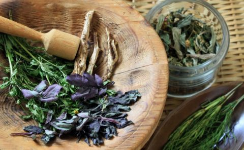 Некоторые растения, используемые в рецептах необходимы в свежем, недавно собранном состоянии, другие рецепты основаны на высушенных компонентах.