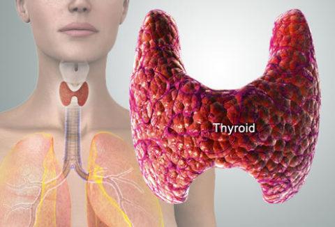 Отек щитовидной железы