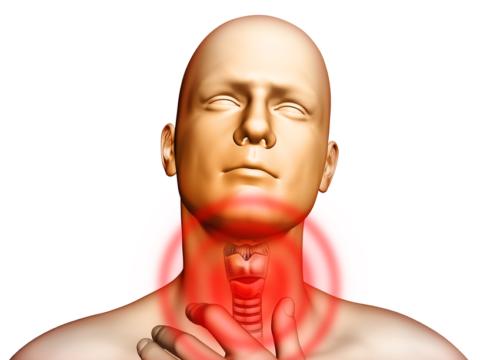 Если поражается щитовидка: признаки заболевания
