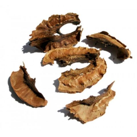 Широко известна польза от применения перегородок грецких орехов при эндокринологии.