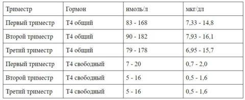 Сводная таблица по норме гормона Т4 для беременных