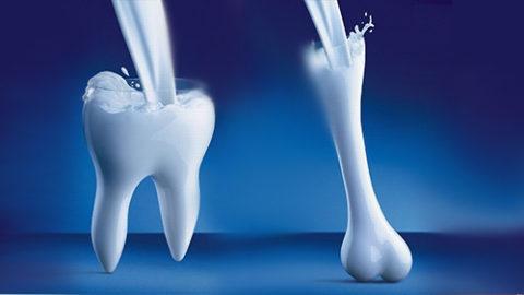 Весь каскад реакций приводит к укреплению костей.