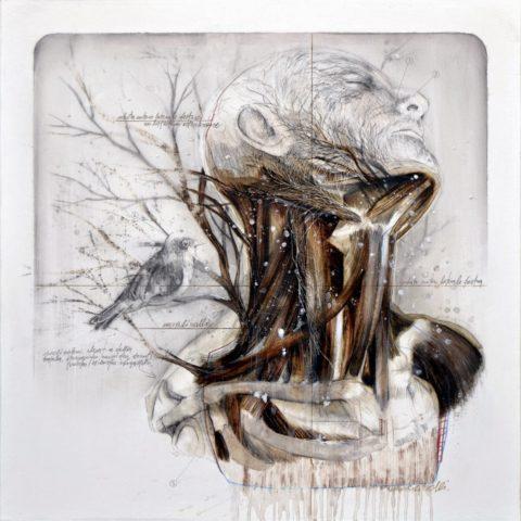 Итальянский художник-современник Нюнцио Пачи на данной картине воссоединяет совершенность анатомии шеи человека, где находятся паращитовидные железы, и всей природы.