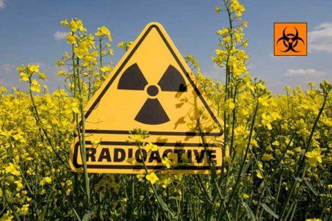 Одной из важнейших профилактических мер является минимизация радиационного воздействия на организм