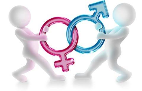От качества работы половых желез во многом зависит качество все жизни человека