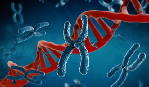 Чаще всего аутоиммунный тиреоидит имеет генетические предпосылки
