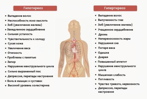 Признаки нарушения функционирования щитовидной железы