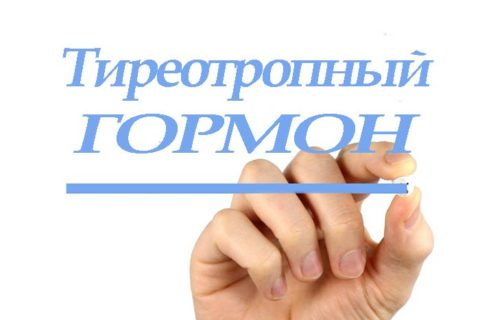Тиреотропин